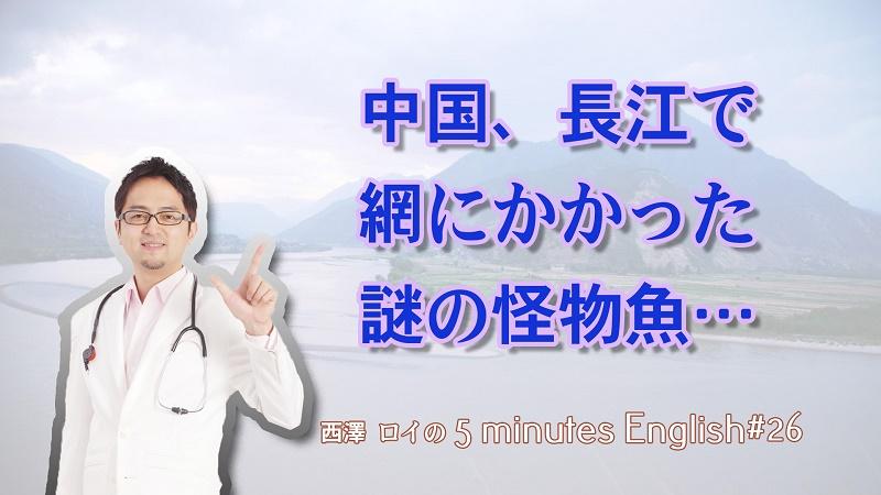 いくら(魚卵)を英語で言えますか? 【#26】