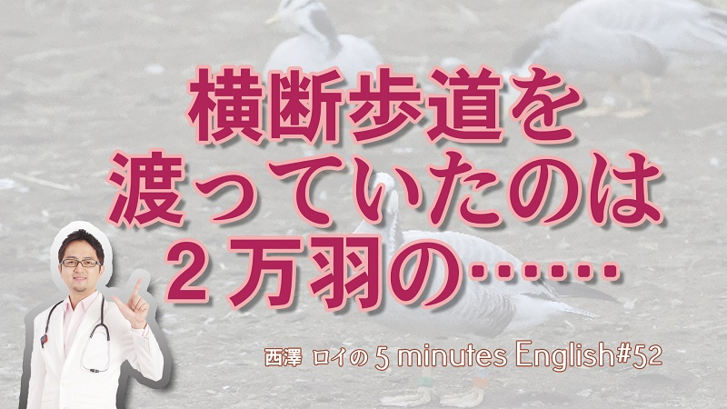日本語には訳せないダブルミーニング【#52】