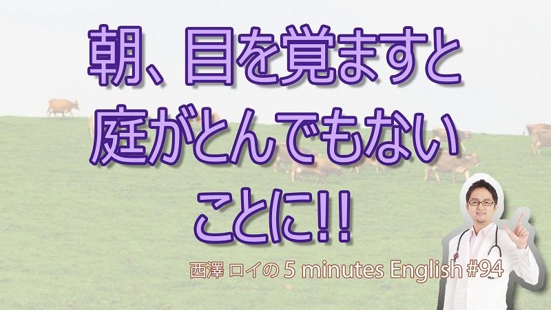 お庭で大騒動inイギリス【#94 5Minutes English】